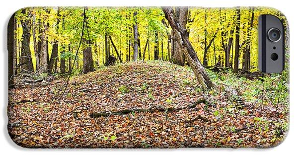 Mounds iPhone Cases - Indian Burial MOund - UW Arboretum  - Madison - Wisconsin iPhone Case by Steven Ralser