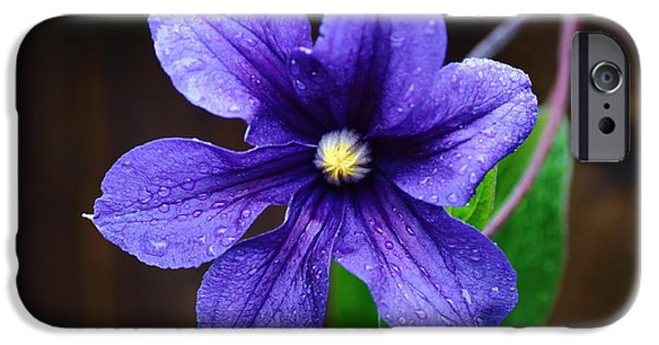 Botanical iPhone Cases - Indigo Clematis iPhone Case by Rumyana Whitcher