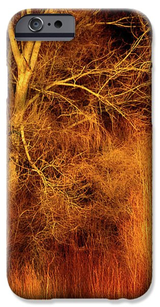 Fury iPhone Cases - Inferno iPhone Case by Wim Lanclus