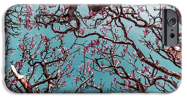 Nature Abstract iPhone Cases - Infrared Frangipani Tree iPhone Case by Stylianos Kleanthous