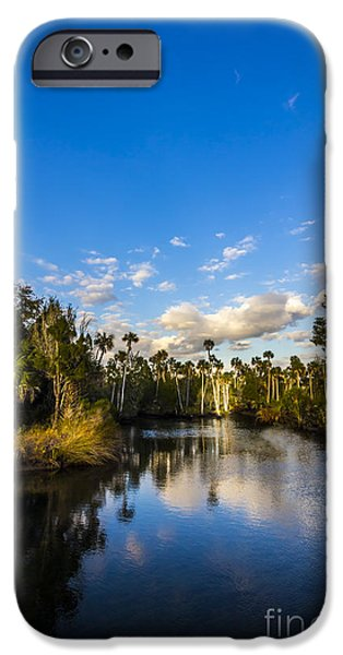 Palmettos iPhone Cases - Inlet Cove iPhone Case by Marvin Spates