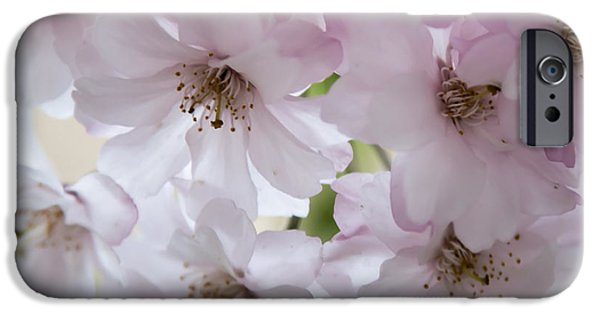 Close Up Pyrography iPhone Cases - Innocence iPhone Case by Olga Photography