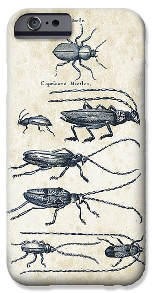 Beetle iPhone Cases - Insects - 1792 - 03 iPhone Case by Aged Pixel