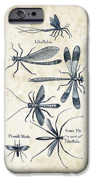 Beetle iPhone Cases - Insects - 1792 - 11 iPhone Case by Aged Pixel
