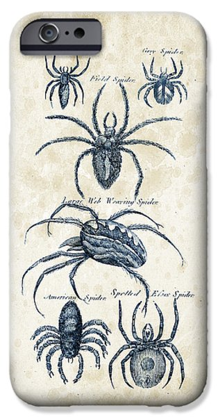 Spider iPhone Cases - Insects - 1792 - 18 iPhone Case by Aged Pixel