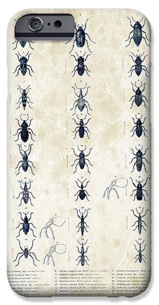 Beetle iPhone Cases - Insects - 1832 - 07 iPhone Case by Aged Pixel