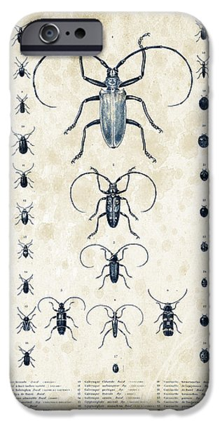 Beetle iPhone Cases - Insects - 1832 - 08 iPhone Case by Aged Pixel