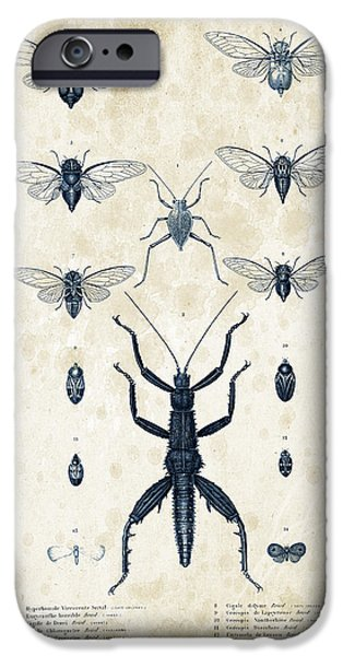 Beetle iPhone Cases - Insects - 1832 - 10 iPhone Case by Aged Pixel