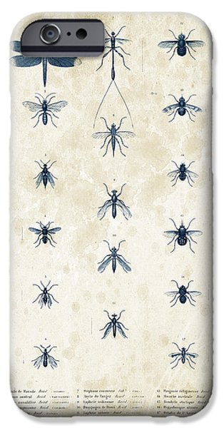 Beetle iPhone Cases - Insects - 1832 - 12 iPhone Case by Aged Pixel