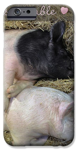 Pig Digital iPhone Cases - Inseparable iPhone Case by Lori Deiter