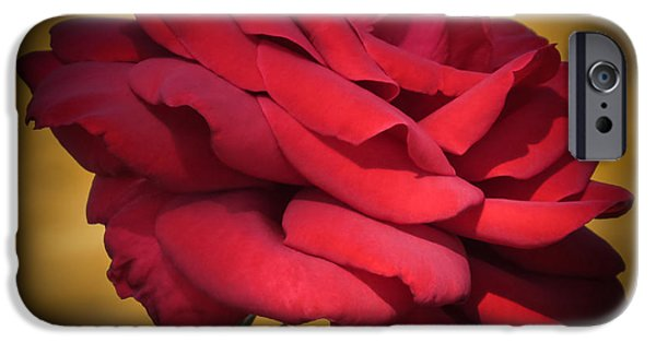 Beauty iPhone Cases - Inside A Rose iPhone Case by Zina Stromberg