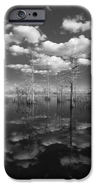 White River Scene Photographs iPhone Cases - Into The Everglades iPhone Case by Debra and Dave Vanderlaan