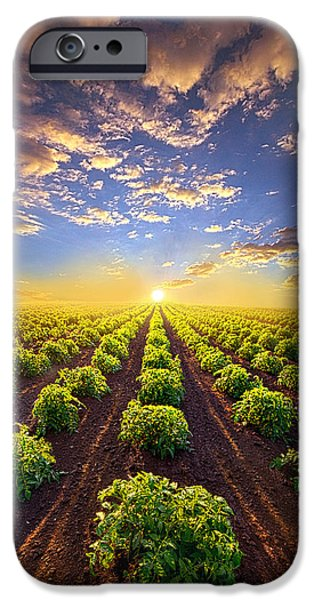 Crops iPhone Cases - Into The Future iPhone Case by Phil Koch