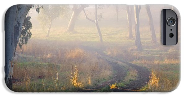 Paths iPhone Cases - Into the Mist iPhone Case by Mike  Dawson