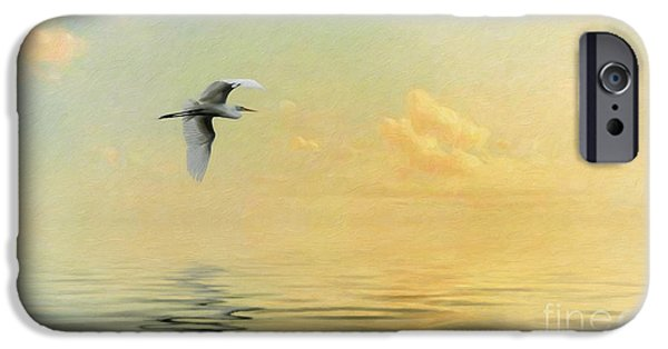 Ocean Sunset iPhone Cases - Into the Sunset iPhone Case by Priscilla Burgers