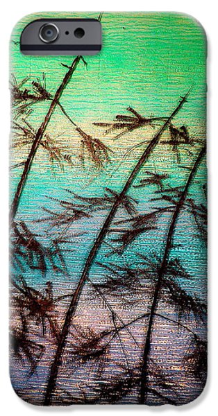 Landscapes Glass iPhone Cases - Into the Wind iPhone Case by Rick Silas