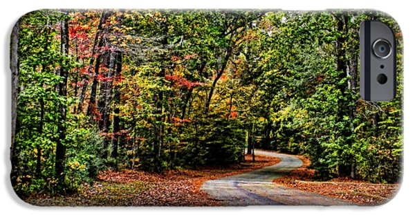 Pathway iPhone Cases - Into the Woods 2 iPhone Case by Judy Vincent
