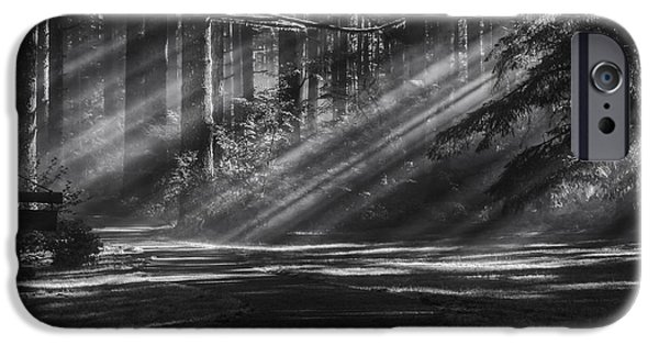 October iPhone Cases - Into the Woods iPhone Case by Mark Kiver