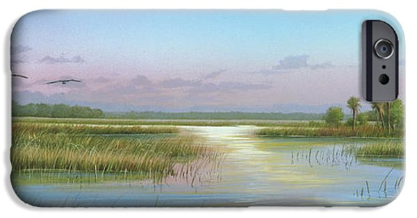 Michael Paintings iPhone Cases - Intracoastal Glimmer iPhone Case by Mike Brown