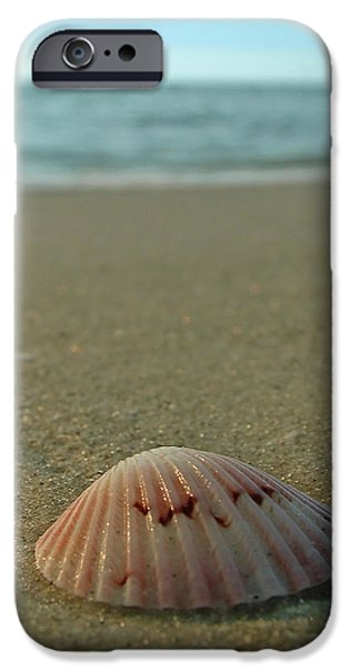 Iridescent Seashell iPhone Case by Juergen Roth