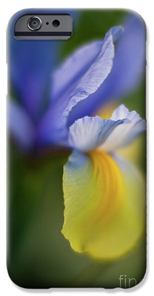 Poetic Photographs iPhone Cases - Iris Grace iPhone Case by Mike Reid