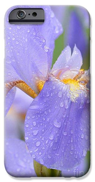 Raining iPhone Cases - Iris-Mary Barnett iPhone Case by Regina Geoghan