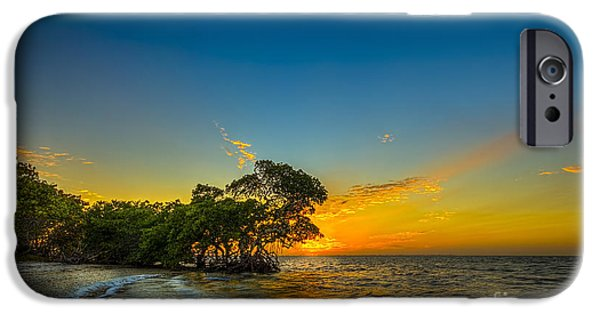 Bayou iPhone Cases - Island Paradise iPhone Case by Marvin Spates