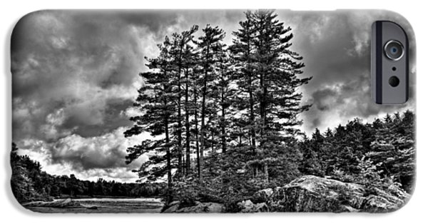 Summer iPhone Cases - Island Pines on the Moose River iPhone Case by David Patterson