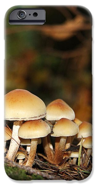 It's a Small World Mushrooms iPhone Case by Jennie Marie Schell