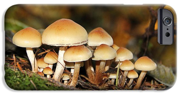 Mushroom iPhone Cases - Its a Small World Mushrooms iPhone Case by Jennie Marie Schell