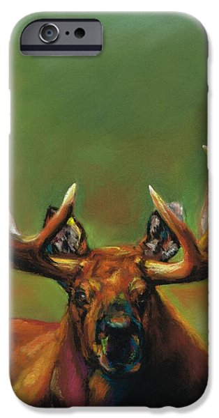 Its All About The Rack iPhone Case by Frances Marino