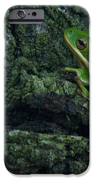 Its Hard to Be Green iPhone Case by Douglas Barnett