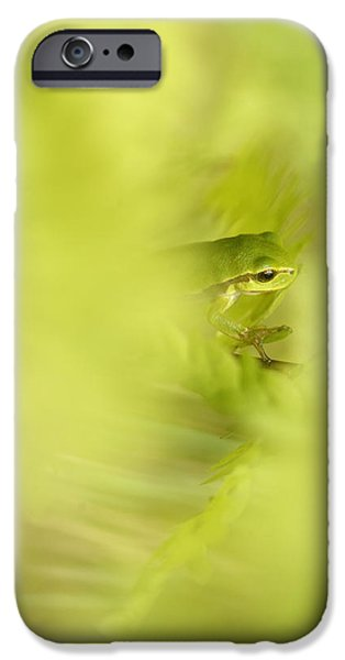 Frogs Photographs iPhone Cases - Its Not Easy Being Green - Tree Frog Hiding  iPhone Case by Roeselien Raimond