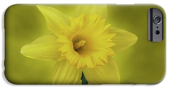 Indiana Springs iPhone Cases - Its Spring iPhone Case by Sandy Keeton