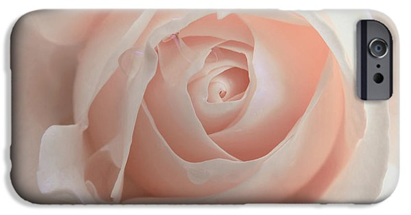 Peach Rose iPhone Cases - Ivory Peach Pastel Rose Flower iPhone Case by Jennie Marie Schell