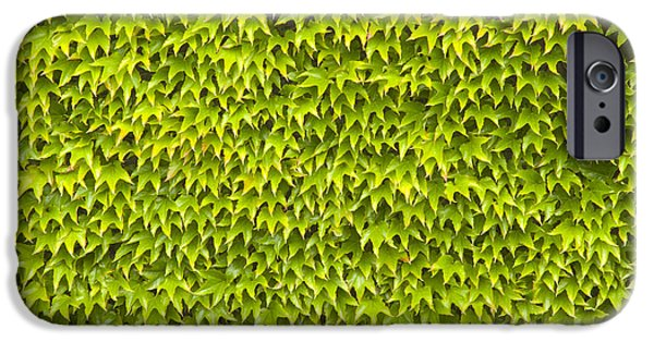 Wimbledon Photographs iPhone Cases - Ivy Wall iPhone Case by Andy Smy