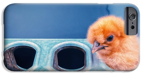 Chicks iPhone Cases - Iz In Da Feeder. iPhone Case by TC Morgan