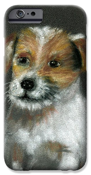 Puppy Pastels iPhone Cases - Jack iPhone Case by Arline Wagner