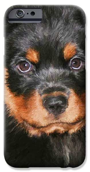 Rottweiler Puppy iPhone Cases - Jacob iPhone Case by David Wagner