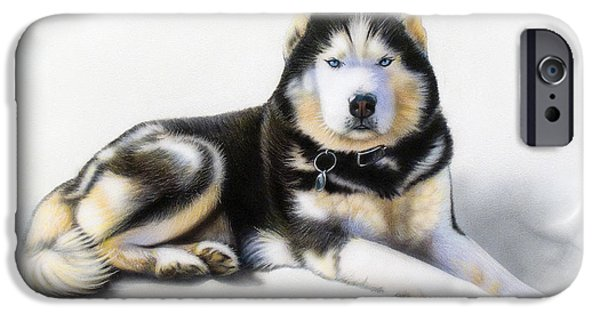 Huskies iPhone Cases - Jacob iPhone Case by Sandi Baker