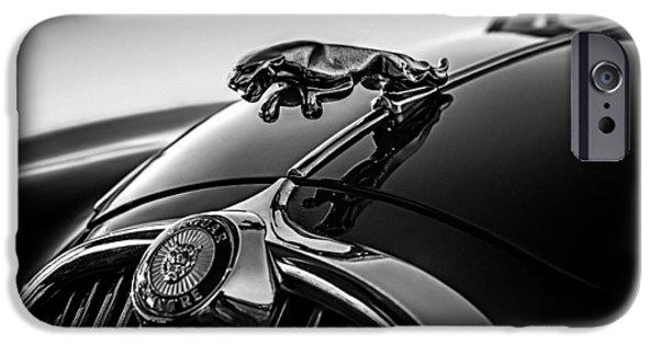 Mascots iPhone Cases - Jaguar Mascot iPhone Case by Douglas Pittman