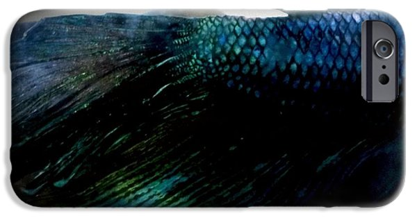 Betta iPhone Cases - JaKhodas Closed Fins iPhone Case by LKB Art and Photography