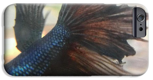 Betta iPhone Cases - JaKhodas untouched tail fin iPhone Case by LKB Art and Photography