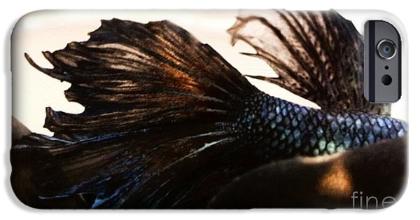 Betta iPhone Cases - Jakhotas Fins iPhone Case by LKB Art and Photography