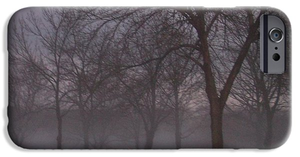 January iPhone Cases - January fog 4 iPhone Case by Anita Burgermeister