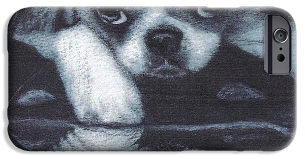 Japanese Chin Puppy iPhone Cases - Japanese Chin Deep Thoughs iPhone Case by Joshua Hullender