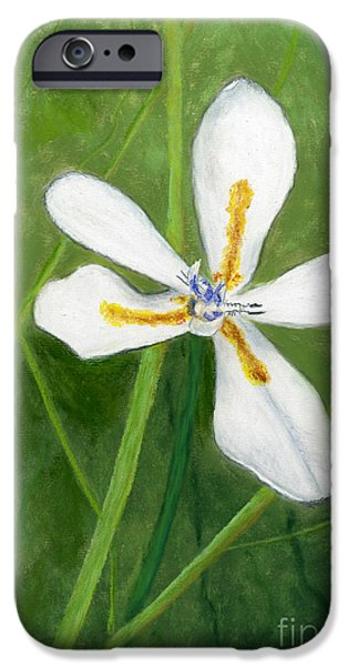 Botanical Pastels iPhone Cases - Japanese Iris iPhone Case by Ginny Neece
