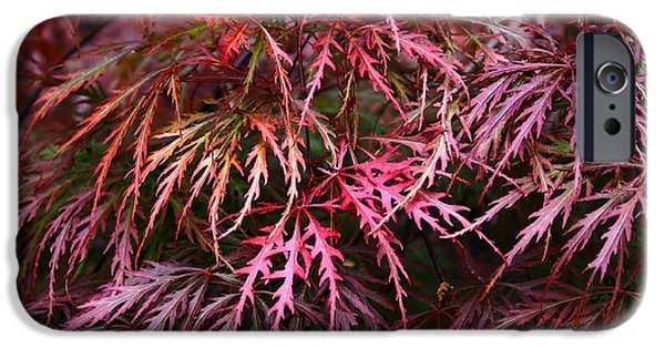 Colorful Abstract iPhone Cases - Japanese Maple iPhone Case by Rona Black