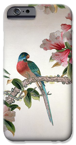 Florals Tapestries - Textiles iPhone Cases - Jay on a flowering branch iPhone Case by Chinese School