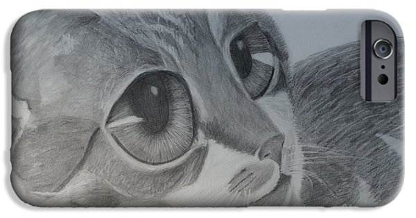 Animal Drawings iPhone Cases - JD Adoration Look iPhone Case by Linda McMillen